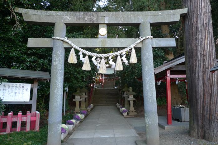 下総の国の神社  麻賀多神社  4
