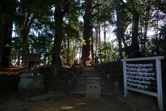 下総の国の神社  麻賀多神社  30