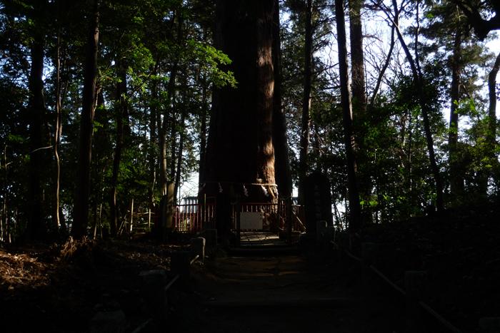 下総の国の神社  麻賀多神社  31