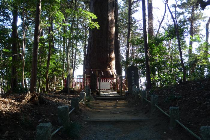 下総の国の神社  麻賀多神社  32