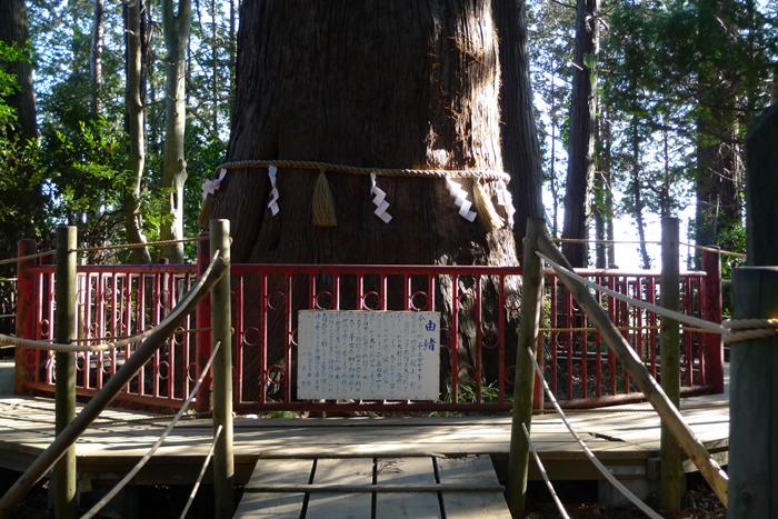 下総の国の神社  麻賀多神社  34