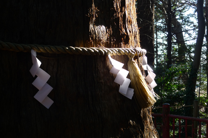 下総の国の神社  麻賀多神社  38