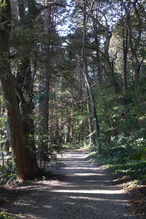 下総の国の神社  麻賀多神社   45