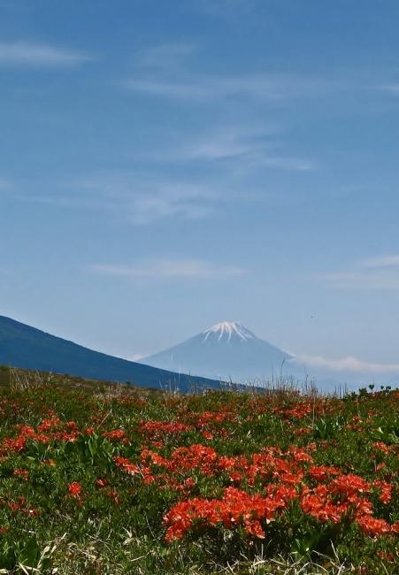 12054-車山高原-5