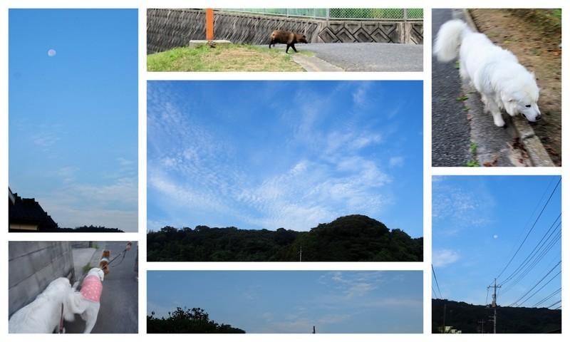 170909秋空散歩