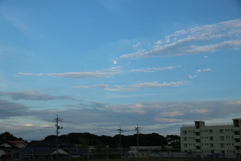 IMG_6466.jpg