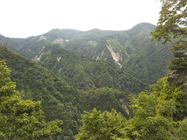 白山白川郷ホワイトライン ふくべの大滝から上り道