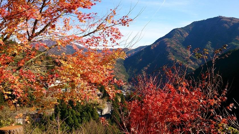 西祖谷へ 紅葉