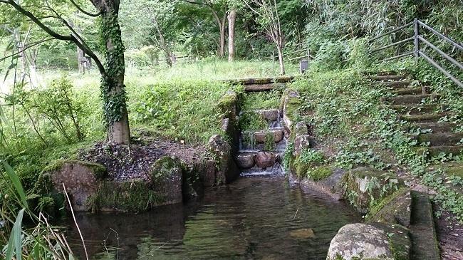 極楽寺山温泉 ホタル観賞池