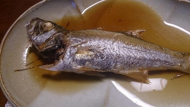 御宿 喜久丸 夕食料理 煮魚