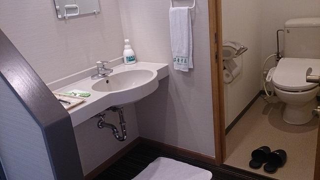 青雲荘 部屋 洗面台、トイレ