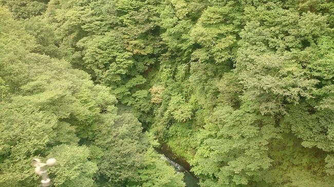 箱根登山鉄道 車窓風景