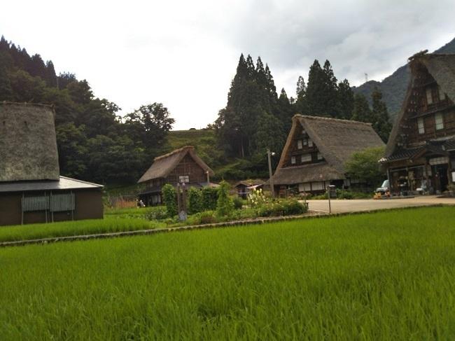 五箇山菅沼集落 田園風景2