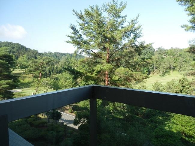 作州武蔵温泉 部屋 眺望