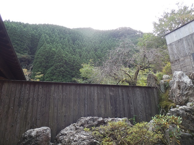 離れの宿白木 裏庭からの眺望