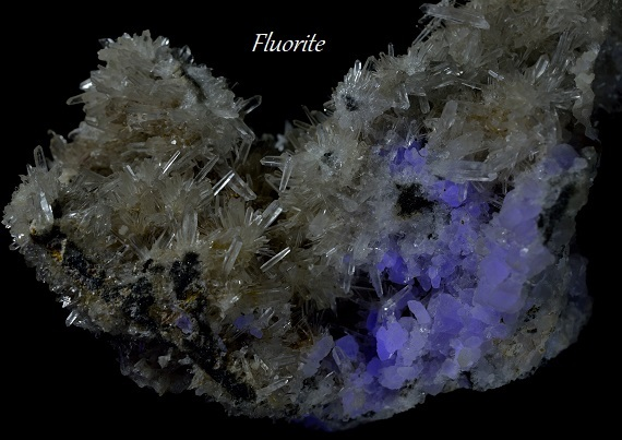 needle&Fluorite