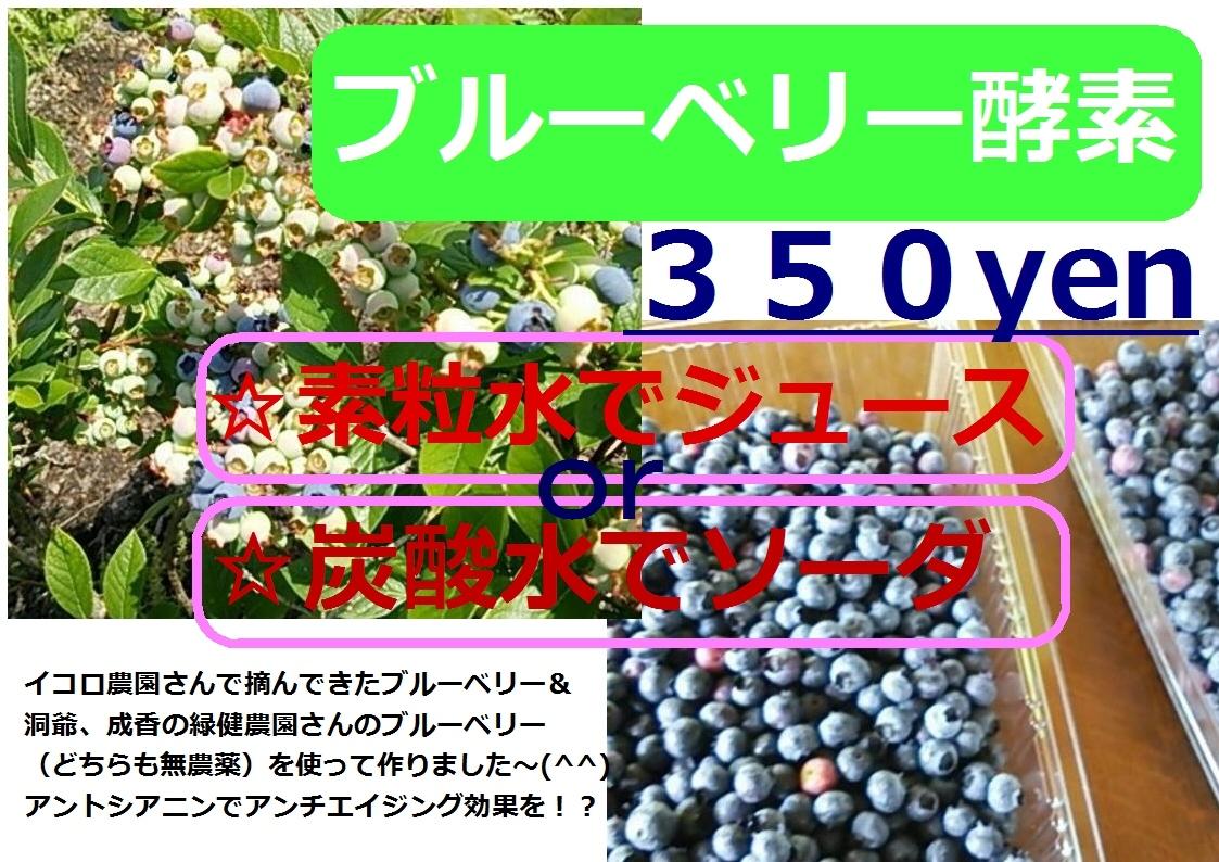 ブルーベリー酵素ポップ