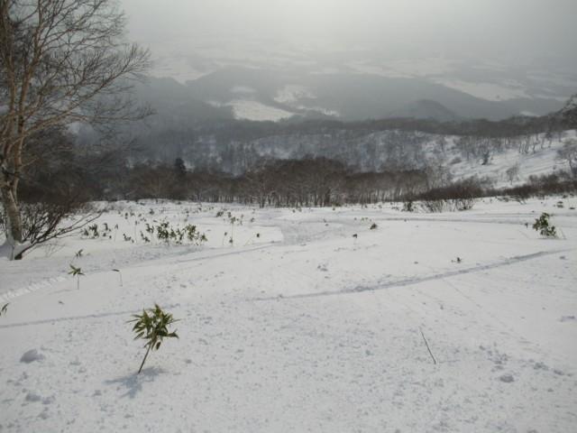 1月2日 1000mより下はベタベタ