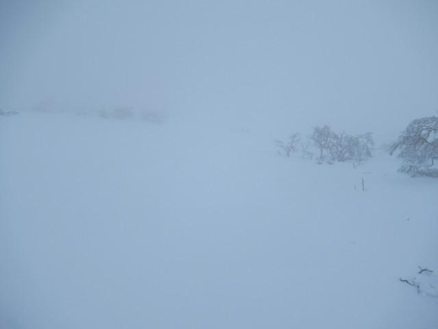 1月3日 1600mでガスって撤退