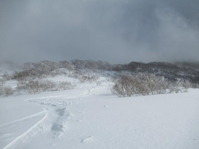1月6日 石山の沢の右岸エリア