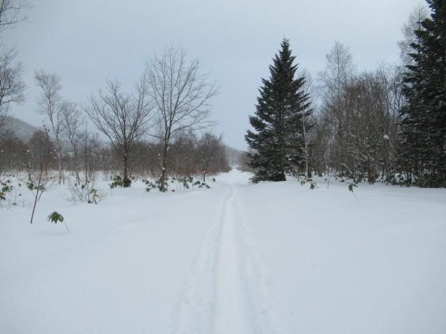 1月6日 帰りの林道