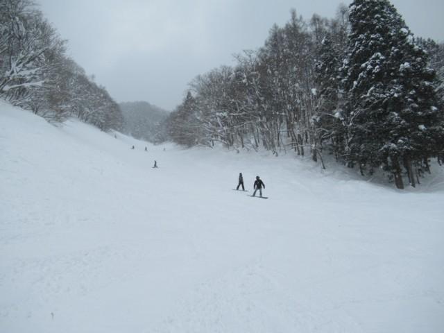 1月22日 滑り応えあり