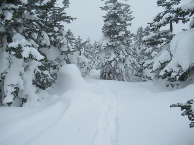 2月5日 重バフ雪で斜度無い