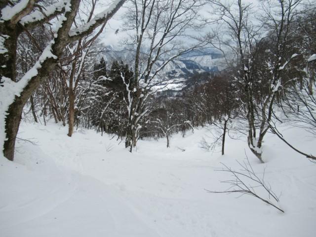 2月5日 ベタ雪のせいで