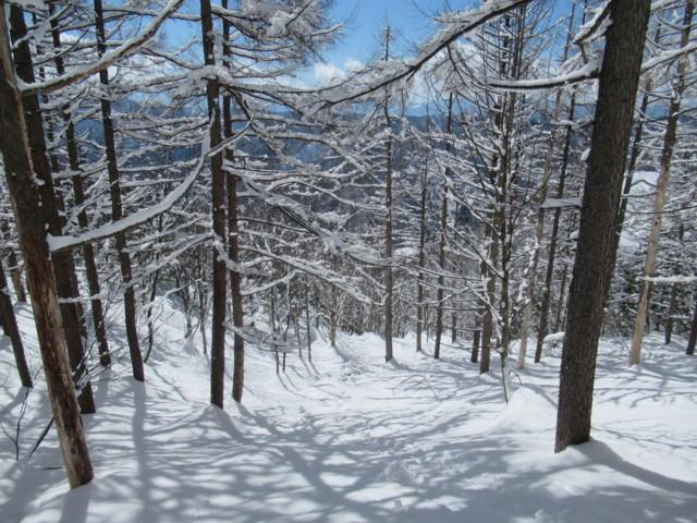 2月25日 晴れてきた.暑い.