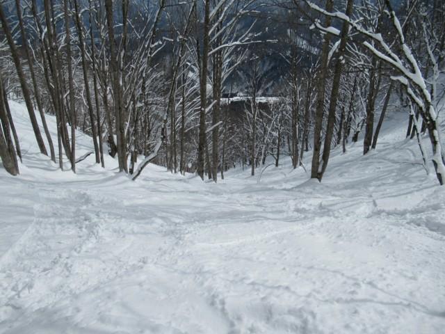 2月25日 まったりツリー