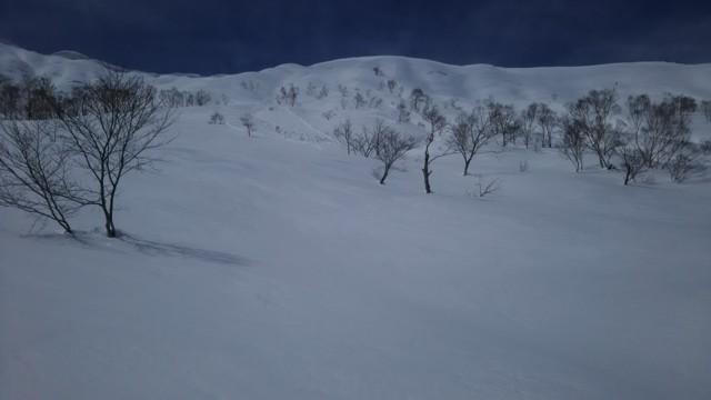 3月25日 標高差300mほどライド