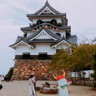 hikonejou20170823.jpg