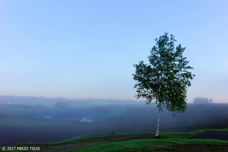 絶景探しの旅 - 0295 夜明けの新栄の丘から (北海道 美瑛町)