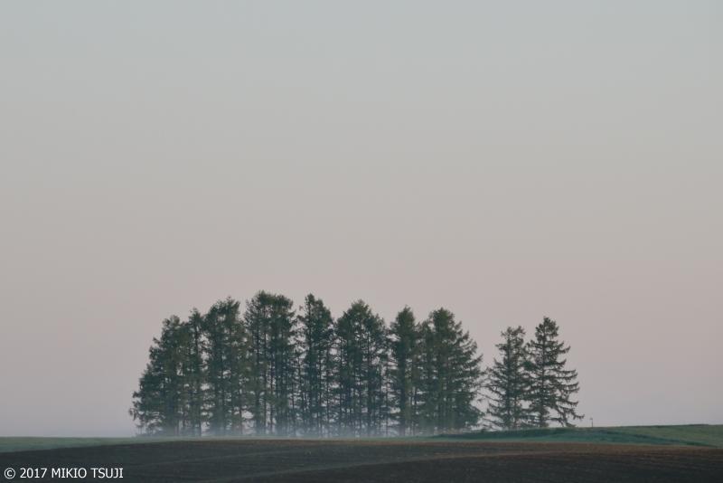 絶景探しの旅 - 0296 幻想の丘 (北海道 美瑛町)