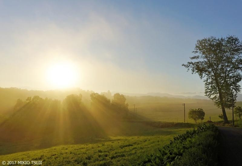 絶景探しの旅 - 0297 朝靄の丘の日の出 (北海道 美瑛町)