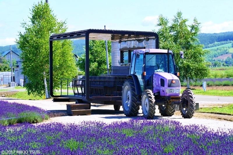 絶景探しの旅 - 0306 紫の大地を巡るラベンダーバス (ファーム富田イースト/北海道 上富良野町)