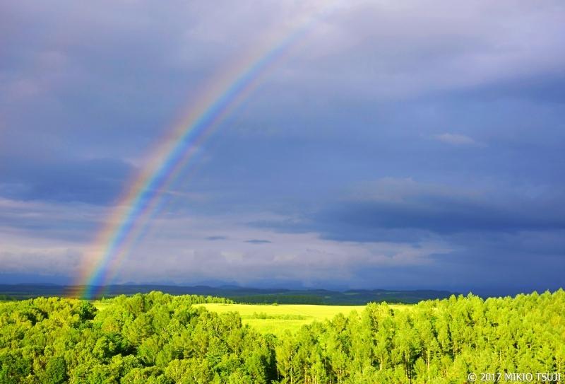 絶景探しの旅 - 0309 虹の新栄の丘(北海道 美瑛町)