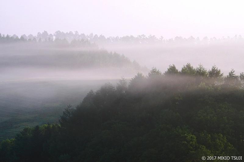 絶景探しの旅 0311 霧の朝 (北海道 美瑛町)