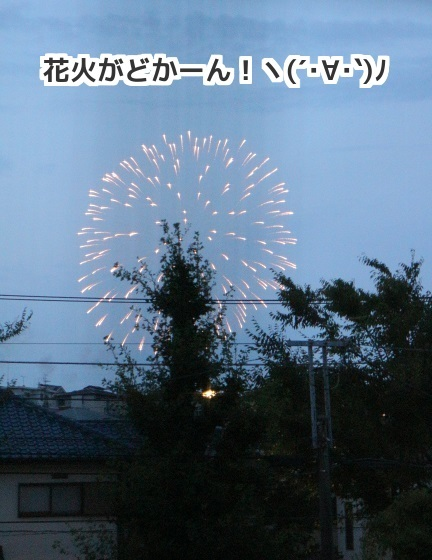 20170723-1.jpg