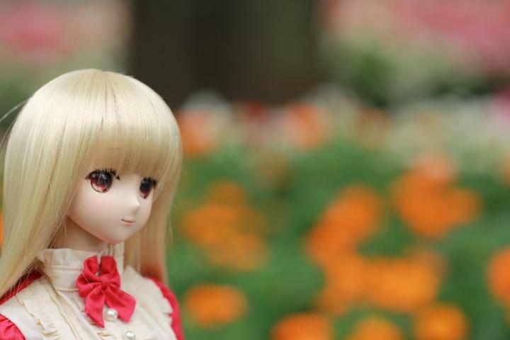 IMG_1331.jpg