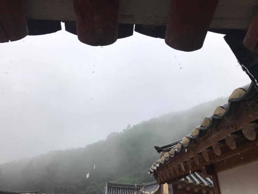 20170823-0850 ナムヤンジュ スタッフ投稿