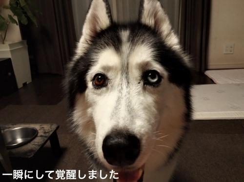 IMG_20170922_211926_Fotor.jpg