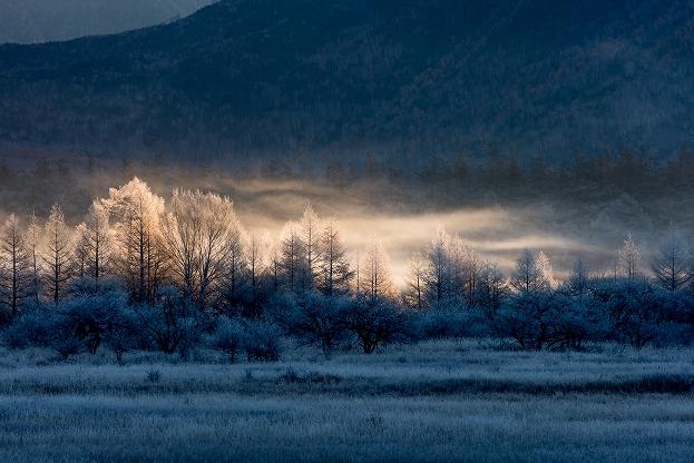 輝く朝もや・小田代ヶ原