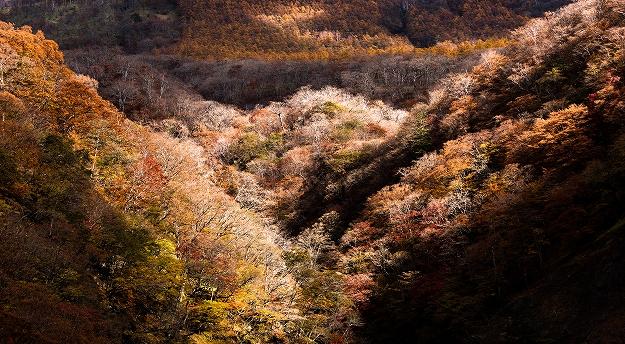 名残惜しい秋の山景