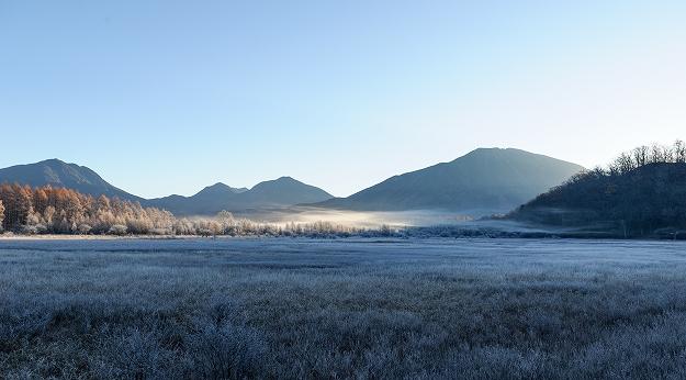 霧氷となった小田代ヶ原