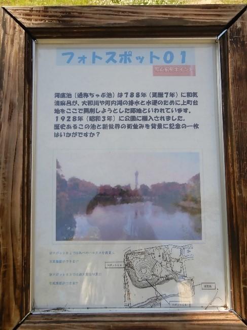 20170724-1 (14)