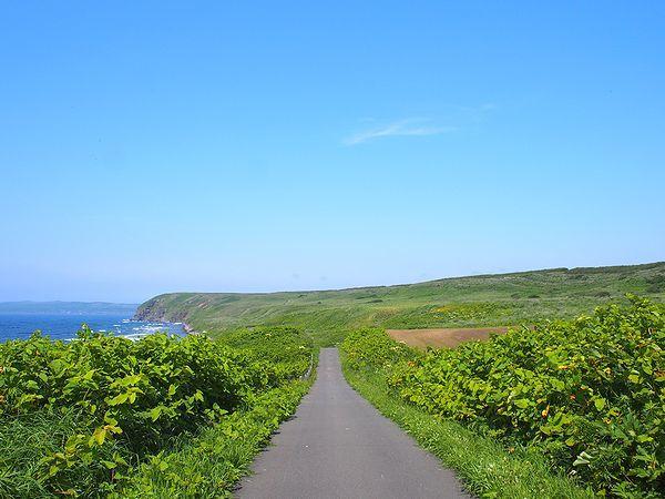 道道焼尻島線