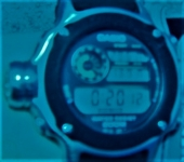 P1270007.jpg