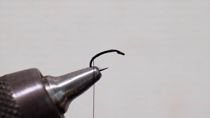 mosquito-immature-0001-001.jpg