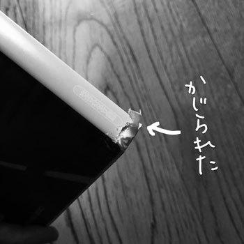 naka5.jpg